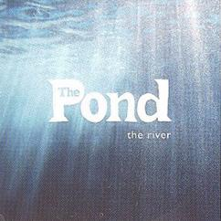 The Pond: The River