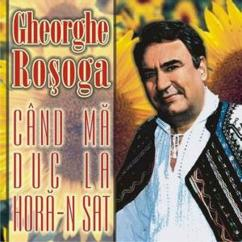 Gheorghe Rosoga: Cand ma duc la hora-n sat