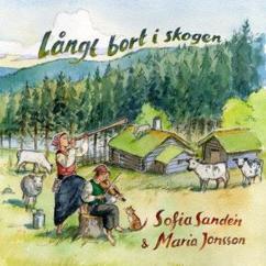 Sofia Sandén & Maria Jonsson: Stamp ätt hästa