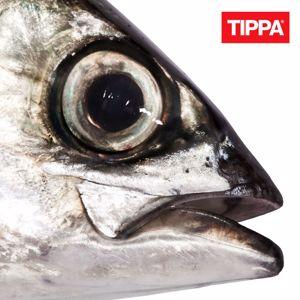 TIPPA, JVG: Roska silmäs