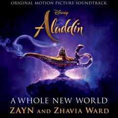 ZAYN, Zhavia Ward: A Whole New World (End Title)