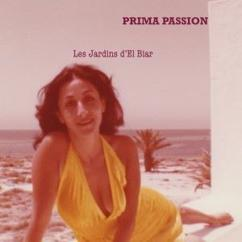 Prima Passion: Les jardins d'El Biar