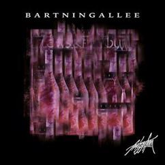 Frizzy Fam feat. TizBeats: Bartningallee
