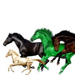 Lil Nas X feat. Billy Ray Cyrus, Young Thug & Mason Ramsey: Old Town Road (Remix)