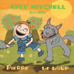 Eddy Mitchell: Présentation des instruments