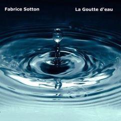 Fabrice Sotton: La goutte d'eau