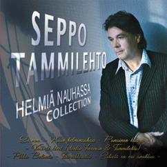 Seppo Tammilehto: Helmiä nauhassa - Collection