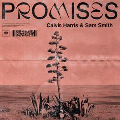 Calvin Harris, Sam Smith: Promises
