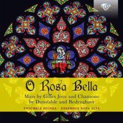 Ensemble Dionea & Ensemble Nova Alta: O Rosa Bella: Mass by Gilles Joye and chansons by Dunstable and Bedyngham