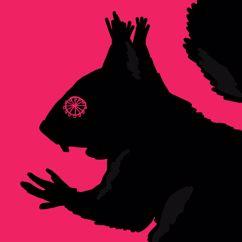 Musta Hanhi: Orava