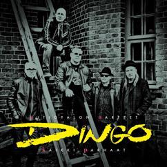 Dingo: Autiotalon aarteet - Kaikki parhaat