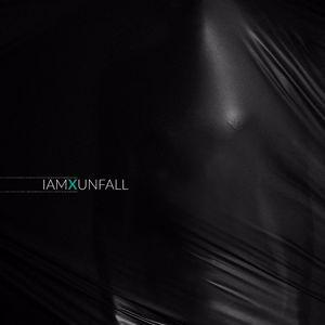 IAMX: Unfall