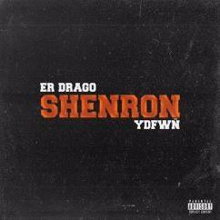 Er Drago & YDFWÑ: Shenron