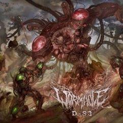 Wormhole: D-S3