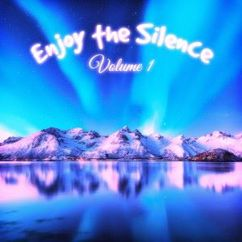 Various Artists: Enjoy the Silence, Vol. 1