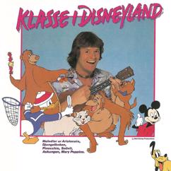 Klasse Möllberg: Klasse i Disneyland