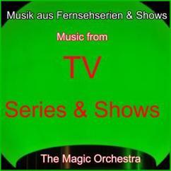 The Magic Orchestra: Ein Fall für zwei