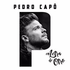 Pedro Capo: Provócame