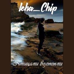 Leha Chip: Птицами вольными