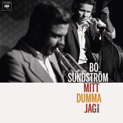 Bo Sundström: Mitt dumma jag - Svensk jazz