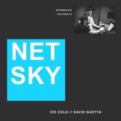 Netsky, David Guetta: Ice Cold