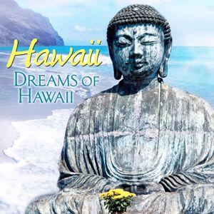 The Waikiki Hawaiians: Hawaii Hawaii