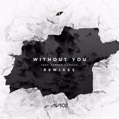 Avicii, Sandro Cavazza: Without You