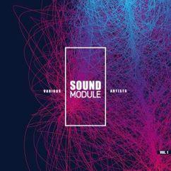 Various Artists: Sound Module, Vol. 1