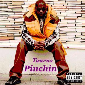 Taurus: Pinchin