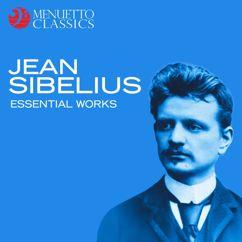Various Artists: Jean Sibelius: Essential Works