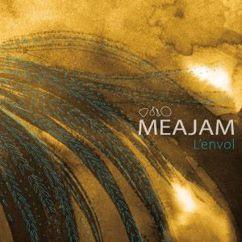 Meajam: L'étendue devant nous