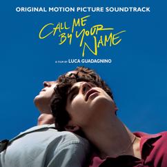 Various Artists: Call Me By Your Name (Original Motion Picture Soundtrack)