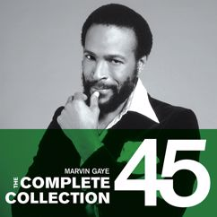 Marvin Gaye: Too Busy Thinking About My Baby