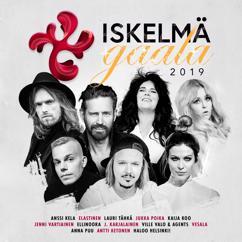 Various Artists: Iskelmägaala 2019