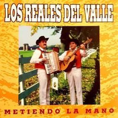 Los Reales Del Valle: Metiendo La Mano (Remastered)