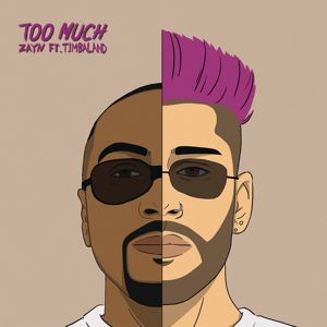 ZAYN feat. Timbaland: Too Much
