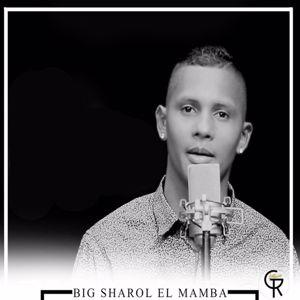 Big Sharol: No Se Como Paso