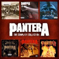 Pantera: A New Level