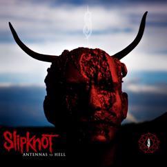 Slipknot: Before I Forget
