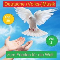 Various Artists: Top 30: Deutsche (Volks-)Musik zum Frieden für die Welt, Vol. 2