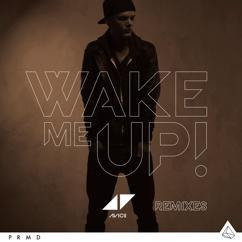 Avicii: Wake Me Up (Reggae Mix)