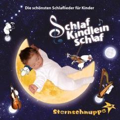 Sternschnuppe: Schlaf Kindlein schlaf: Die schönsten Schlaflieder für Kinder