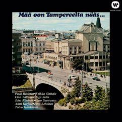 Various Artists: Mää oon Tampereelta nääs