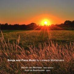 Werner van Mechelen & Jozef de Beenhouwer: In Flanders' Fields 19: Songs and Piano Music by Lodewijk Mortelmans