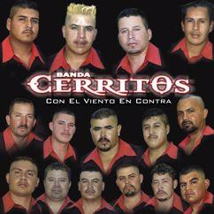 Banda Cerritos: Con El Viento En Contra