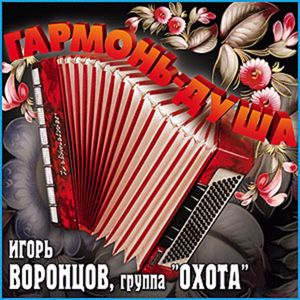 Игорь Воронцов: Гармонь - душа