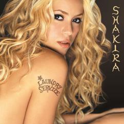 Shakira: The One