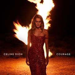 Céline Dion: Imperfections