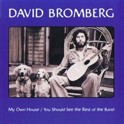 David Bromberg: Key To The Highway