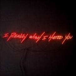 blink-182: I Really Wish I Hated You